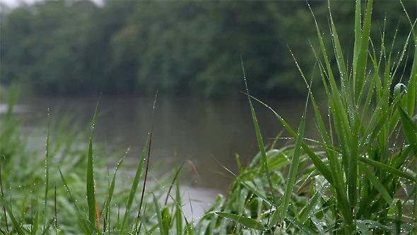 lluvia rio