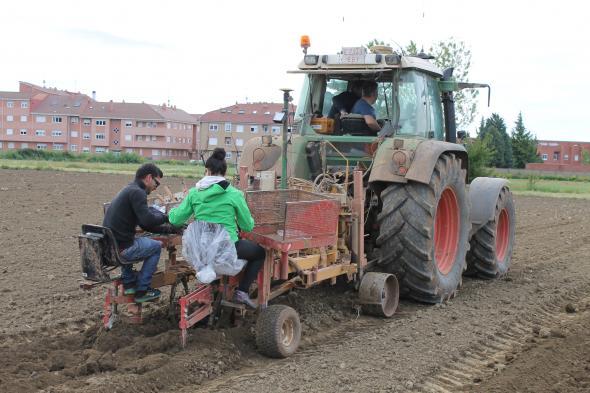 Plantada una hectárea experimental de viñedos en la Escuela de Agrícolas de laULE