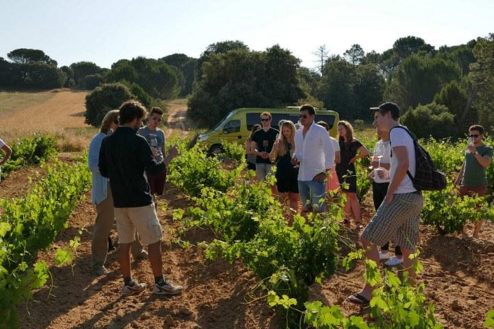 La II edición del Wine Camp acerca a jóvenes extranjeros a la Ribera delDuero