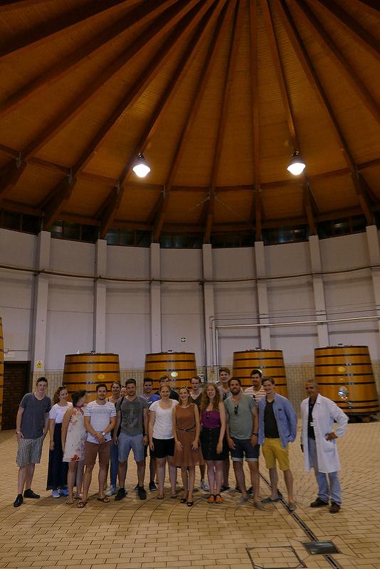Summer Wine Camp_3