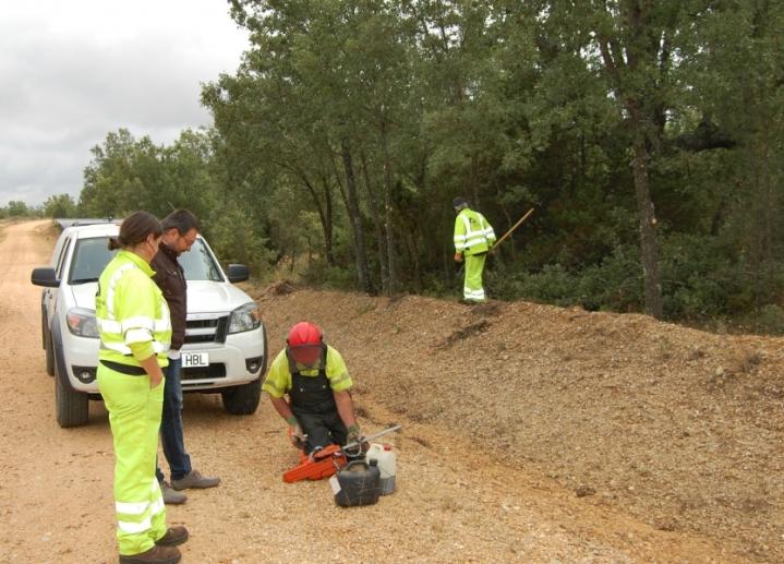Las brigadas forestales de Soria han intervenido ya en las zonas periurbanas de 91 municipios de laprovincia