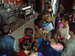 visita-alumnos-de-primaria-a-bodega-tradicional-y-bodega-hiriart-en-cigales-7