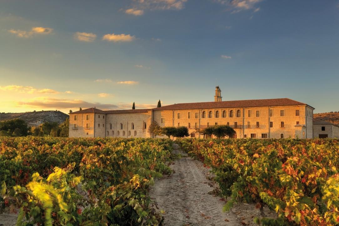 abadia retuerta, abadía retreta, vino blanco, le domaine, vino, cosecha, 2016, rueda,