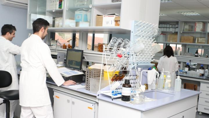 Investigadores de la UVa logran detectar varios virus que infectan a un peligroso patógeno forestal mediante el uso de las nuevas técnicas de secuenciación delgenoma