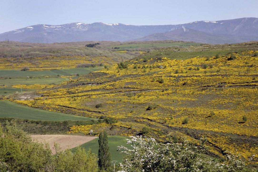Palencia Las Loras geoparque