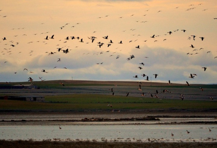 Más de 40 actividades están programadas con motivo del XXV aniversario de la Red Natura2000