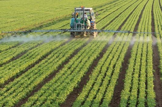 fertilizante.jpg