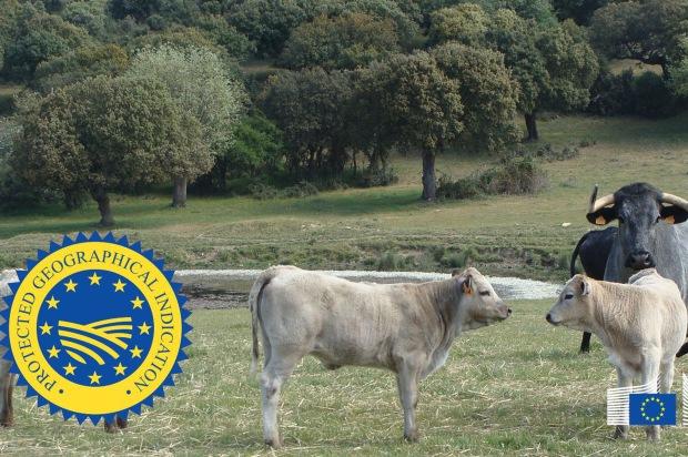180118igpcarnedesalamanca_tcm7-477420_noticia.jpg