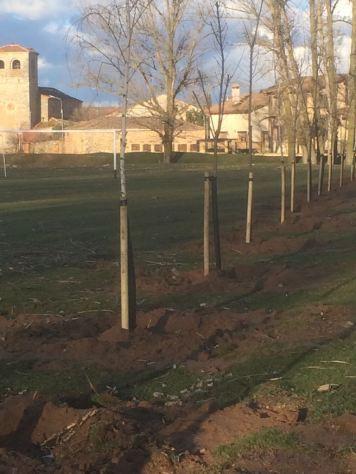 Foto Plantación árboles Riaguas. Marzo 2018 (2)