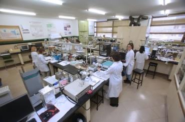 20180611-Universidad-de-Valladolid-NdP-Un-nuevo-sensor-electroquimico-analiza-en-la-piel-de-la-uva-el-momento-optimo-de-la-vendimia-F02.JPG_116529035