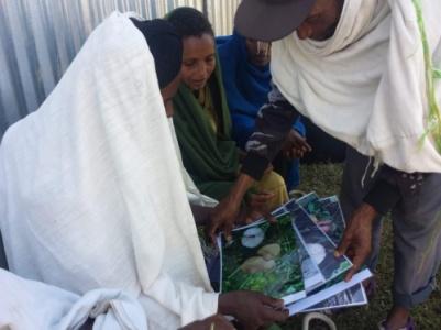 Trabajo-de-encuestas-a-las-mujeres-de-la-poblacion-de-Hawassa.jpg_116528909