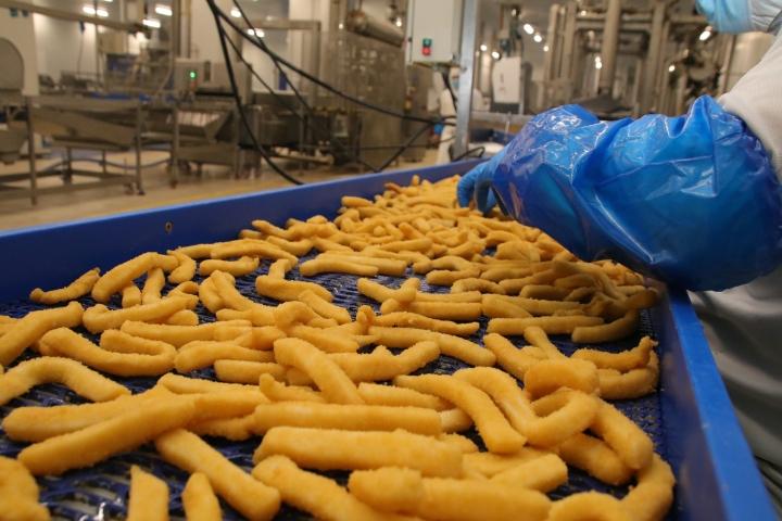 El sector agroalimentario español es el cuarto mayor exportador de los países de la UniónEuropea