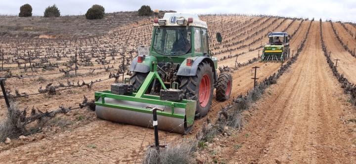 'Novaterra' recibe a los viñedos deAnguix
