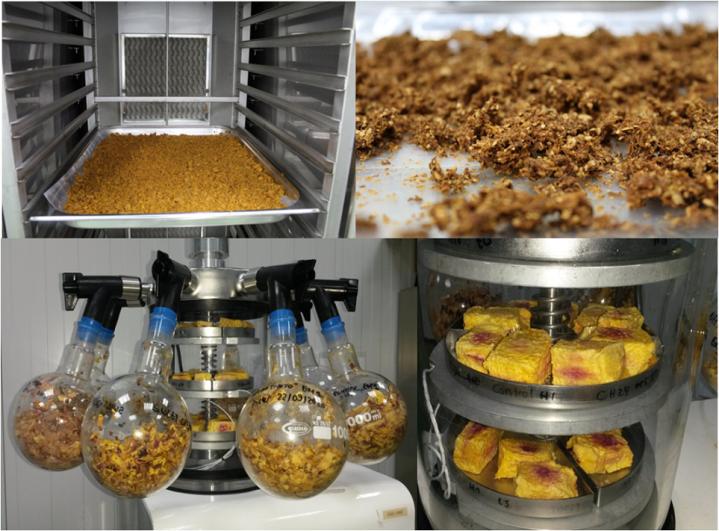 El Itacyl apuesta por la investigación en alimentos sin gluten para ayudar a mejorar la calidad de vida de las personas con alergias e intoleranciasalimentarias
